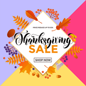 Thanksgiving Day Sale in 2020