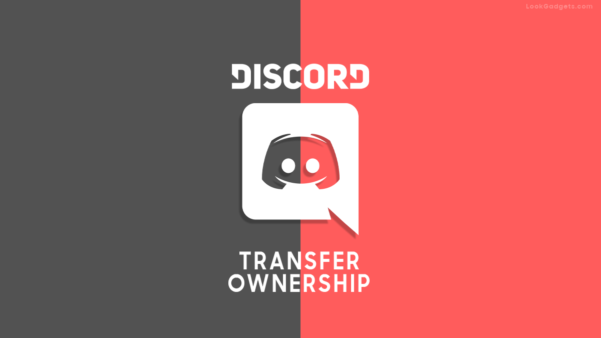 How to transfer Discord Ownership